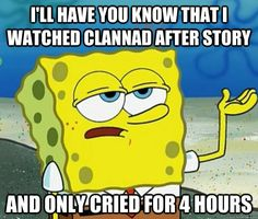 I'll have you know that i watched clannad after story and only cried for 4 hours