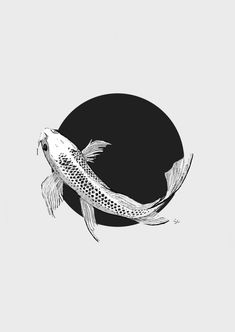 """Koi fish are the domesticated variety of common carp. Actually, the word """"koi"""" comes from the Japanese word that means """"carp"""". Outdoor koi ponds are relaxing. Koi Fish Drawing, Koi Fish Tattoo, Fish Drawings, Art Drawings, Drawing Sketches, Art Koi, Fish Art, Koi Kunst, Illustration Art Drawing"""