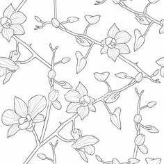 http://rowhousenest.com/wp-content/uploads/2011/02/orchid-wallpaper2.jpg