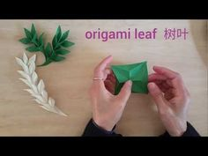 Easy Origami Willow leaf 折纸柳树叶 - YouTube