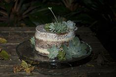 Uma parceria doce e florida: Suculentas: We Plant atelier & flowershop Doces: Brigadolandia Foto: Francine Deziderio