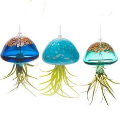 Jellyfish Air Plant Hangers in hand-blown art glass hold plants with magical and fluid style! Each glass hanger is unique with gold dust accents, makes cool gift Colorful Fish, Tropical Fish, Garden Urns, Head Planters, Boutique Homes, Garden Gifts, Planter Boxes, Jellyfish, Air Plants
