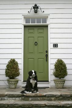 New farmhouse exterior paint colors green front doors Ideas Front Door Paint Colors, Exterior Paint Colors For House, Painted Front Doors, Paint Colors For Home, Front Door Decor, Paint Colours, Green Front Doors, Interior Windows, Farmhouse Front