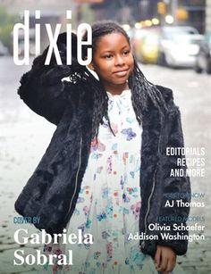 Dixie Magazine - November Issue 2017…