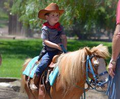 Getting ready to cut cattle Cattle, Cowboy Hats, Horses, Animals, Fashion, Gado Gado, Moda, Animales, Animaux
