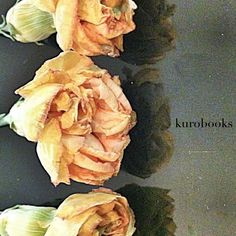 kurobooks photo by TsutomuKomine