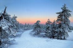 ***Winter road (Sweden) by Maria A on 500px ❄️cr.