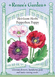 Poppy - Heirloom Pepperbox Seeds Renee's Garden Seeds https://www.amazon.com/dp/B004NFAZR6/ref=cm_sw_r_pi_dp_x_2OPSybZCFS6SD