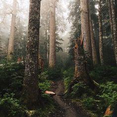 pathway to a secret heaven ...