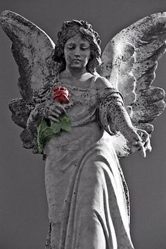 Gorgeous cemetery angel in an old cemetery in New Orleans...