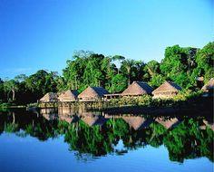 Amazonia!