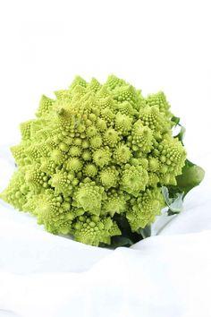 Broccolo romanesco ricette, come fare la pasta con broccolo e acciughe