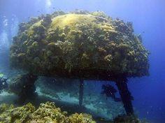 Underwater Human Habitats