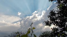 Photofusionvirtual: Rayos de sol wallpapers