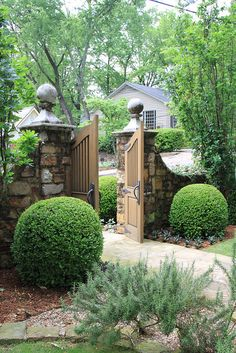 boxwood, garden gate... absolutely lovely
