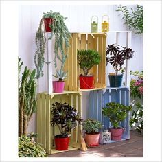 Organise your plants with some repurposed wooden crates.