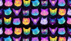 GALACTIC CATS by Jen Bartel on Behance
