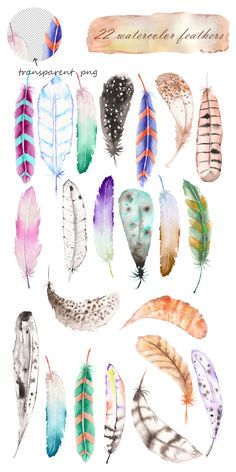 Watercolor Air Feathers set by Skliarova on Watercolor Feather, Feather Painting, Feather Art, Watercolor Background, Watercolour Painting, Watercolor Flowers, Painting & Drawing, Painting Flowers, Watercolor Pencils