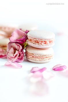 Rose Macarons and a giveaway   supergolden bakes