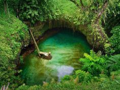 Cenote cerca de Rio Lagartos
