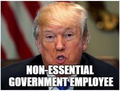 The 25 Funniest Trump Shutdown Memes - The Political Punchline Government Shutdown, Republican Party, Inevitable, Political Cartoons, Best Memes, Just In Case, Donald Trump, Politics