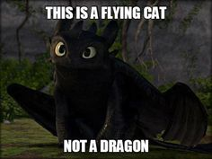 TOOTHLESS MEMES!!!!! | School of Dragons | How to Train Your ...