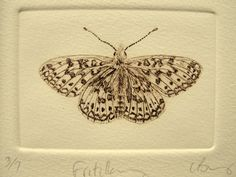 Brown Fritillary butterfly. Small drypoint print on cream cotton paper on Etsy, $55.42 AUD