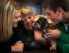 Column_how-many-pets-are-put-up-for-adoption