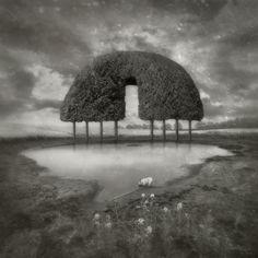 Oasis, processing by Dariusz Klimczak