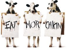 Meet the Chick-fil-A Cows and learn about the campaign. Since 1995 the cows have spread their message far and wide: Eat Mor Chikin!