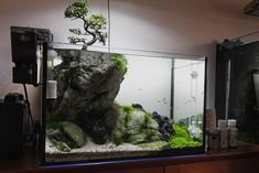 "We also kind of like this tank, ""Use your imagination"" by Filipe Oliveira, 60l — featuring this huge piece of rock with a small bonsai tree on the top of the cliff. But ironically enough, it would be even better without the tree :D"