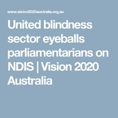United blindness sector eyeballs parliamentarians on NDIS - Vision 2020 Australia Disability Insurance, Blinds, The Unit, Australia, Shades Blinds, Blind, Shades, Shutters, Window Coverings