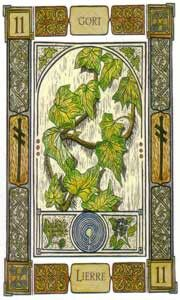 "Celtic Oracle Cards,""Ivy"" Ogham: Gort. The inner voyage; It is the exploration of your inner world that is represented by the Ivy, that traces its way across the stone walls. You may find yourself in one of life's whirlwinds and feel lost, retrieve your roots."