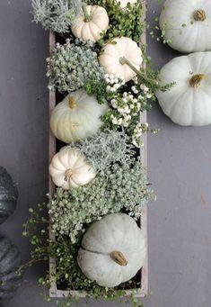 Alyssa Wilcox Interiors Fall Decor Inspiration