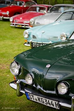 VW Karmann Ghia line-up at Stanford Hall. The Karmann Ghia was our first car. Wish we'd hung on to it.