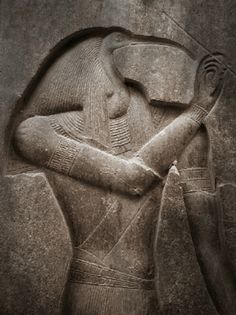 The Ape of Thoth