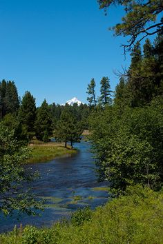 Head of the Metolius River, Three Sisters, OR