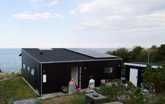 Solfanger på taget
