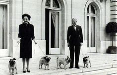 The Duke and Duchess of Windsor with their pugs