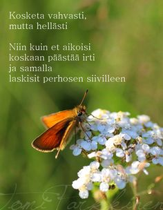 Tomi Parkkisen runot | Runoja rakkaudesta ja kaikesta sen väliltä Wise Quotes, Motivational Quotes, Finnish Words, Affirmation Cards, Life Advice, Story Of My Life, Note To Self, Wise Words, Grateful