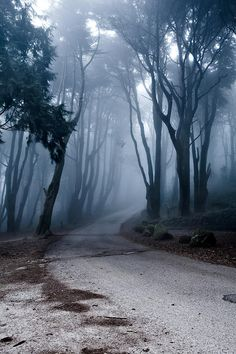 The Last Road Photograph by Jorge Maia - The Last Road Fine Art Prints and Posters for Sale