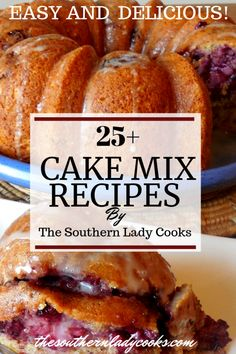 These cake mix recipes are all amazing. Definitely save these wonderful recipes, all made by The Southern Lady cooks for anytime you need a quick cake! Spice Cake Mix Recipes, Recipes Using Cake Mix, Cake Mix Desserts, Box Cake Recipes, 13 Desserts, Cake Mix Cookies, Cupcakes, Blueberry Recipes Cake Mix, Yellow Cake Recipes
