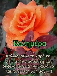 Greek Love Quotes, Good Morning, Decor, Products, Roses, Cute, Inspiring Sayings, Greek, Buen Dia