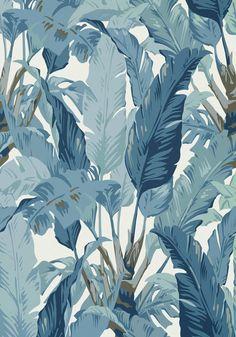 Travelers Palm wallpaper, blue tropical leaf wallpaper, from the Tropics wallpaper collection Palm Wallpaper, Lines Wallpaper, Tropical Wallpaper, Landscape Wallpaper, Animal Wallpaper, Colorful Wallpaper, Flower Wallpaper, Wallpaper Backgrounds, Iphone Wallpaper