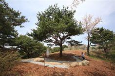 祈りのしるしの松 - WolMyeongDong(キリスト教福音宣教会)