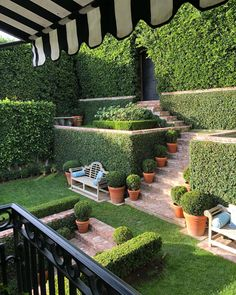 52 Adorable Diy Backyard Design Ideas That You Can Make In Your Home - Want to turn that backyard space into a beautiful haven? Perhaps it is high time for you to go over some backyard landscape ideas. The best suited lan. Small Gardens, Outdoor Gardens, Front Yard Landscaping, Landscaping Ideas, Boxwood Landscaping, Florida Landscaping, Backyard Privacy, Outdoor Landscaping, Patio Ideas