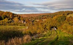 This Week is #NationalParksWeek! Today we'll be focusing on #TheNorthYorkMoors