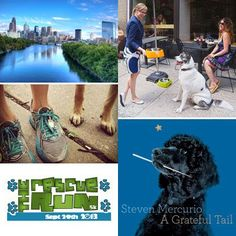 Dog Friendly Philly
