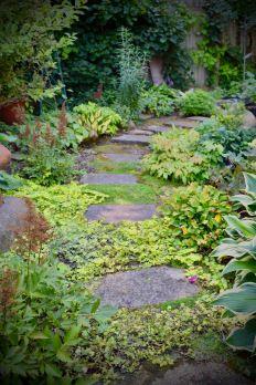 A garden exquisite in every way Niagara Region, Stepping Stones, Buffalo, Gardens, Tours, Outdoor Decor, Plants, Garden, Flora