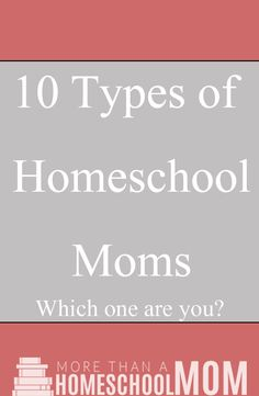 What type of homeschool mom are you? Are you one of the 10 types of homeschool moms or a combination of many of these?